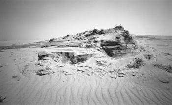 Sand05a