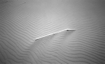 Sand08